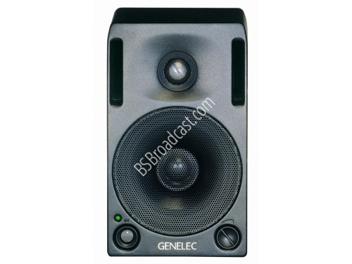 Genelec 1029A Audio Monitor..